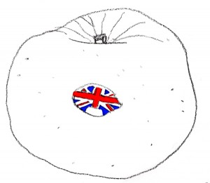 Bramley Apple Sketch with Union Jack