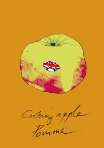 Bramley apple large format Giclee print